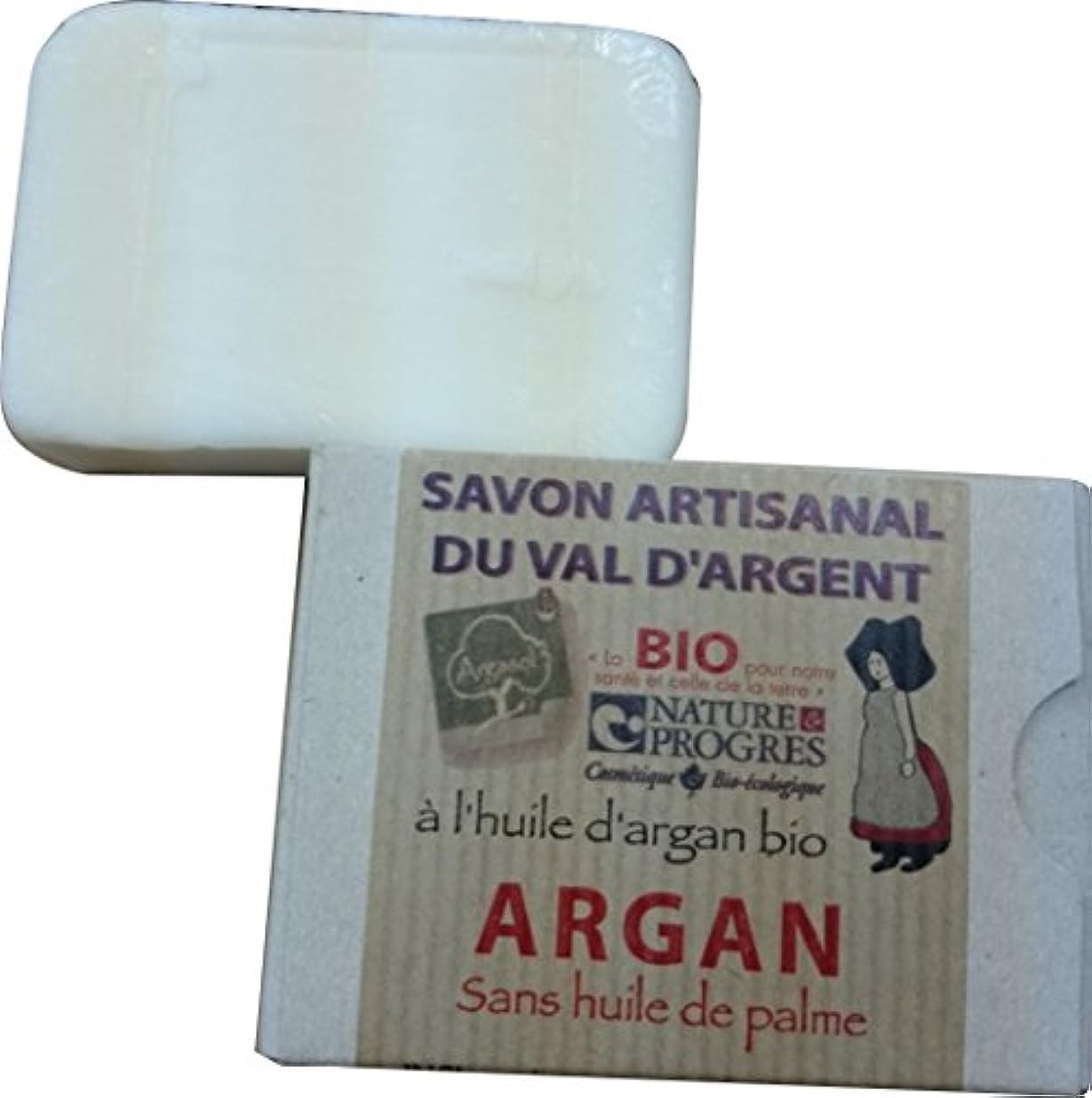 行為環境に優しい電球アルガン