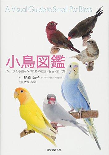 小鳥図鑑―フィンチと小型インコたちの種類・羽色・飼い方の詳細を見る