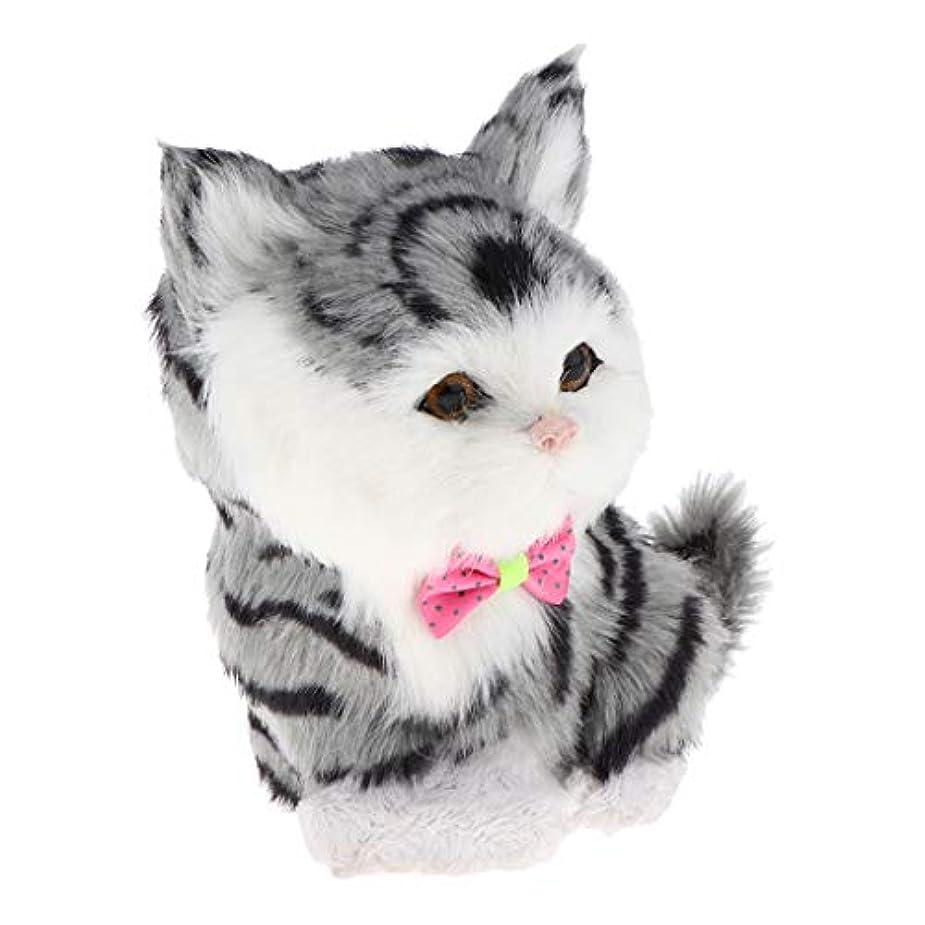 までスキーム涙6カラー 猫動物人形 猫ぬいぐるみ 車のダッシュボード 卓上のため 除菌 消臭 おもちゃ - ドラゴンリー