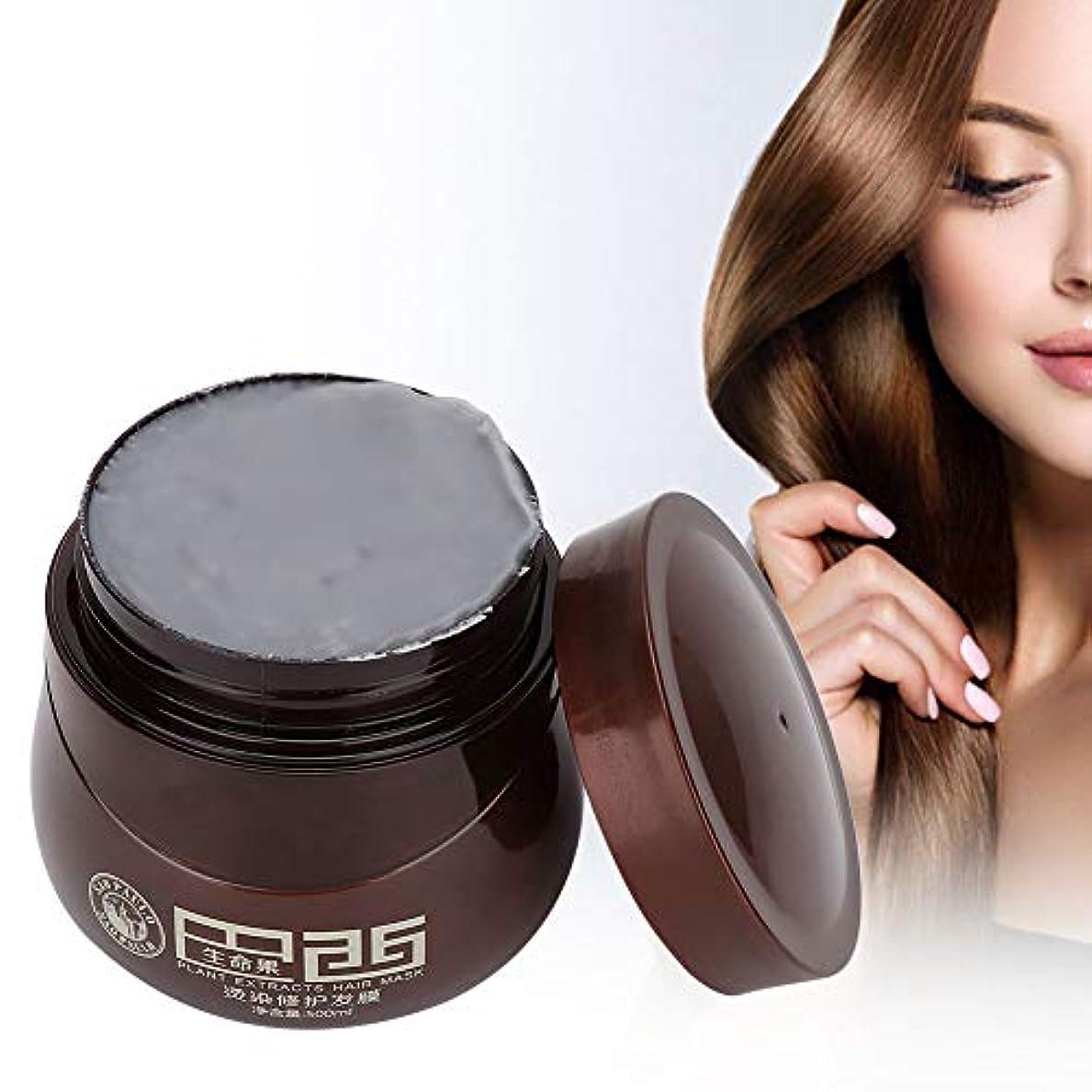 ポジティブくぼみ量ヘアマスク、染毛剤ダメージヘアナリッシングリペアマスクトリートメントコンディショナープロのヘアサロンや家庭での使用に最適500ml