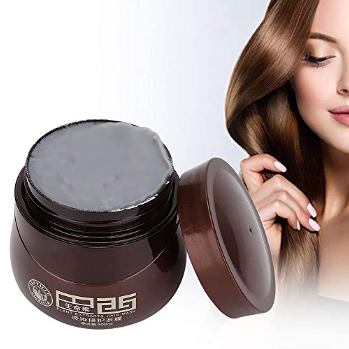 ヒープ倒産患者ヘアマスク、染毛剤ダメージヘアナリッシングリペアマスクトリートメントコンディショナープロのヘアサロンや家庭での使用に最適500ml