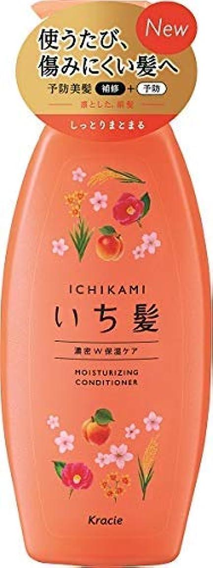 秋亜熱帯ドレインいち髪 濃密W保湿ケアコンディショナー ポンプ × 8個セット
