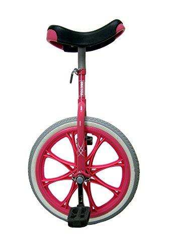 [해외]SAGISAKA (헤론 오사카) 외발 자전거 18 인치 4896 핑크 18 인치/SAGISAKA (Sagisaka) unicycle 18 type 4896 pink 18 type