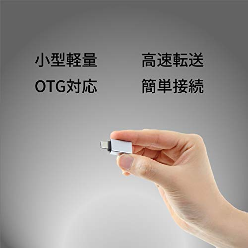 『STAB ILIST usb-type-c-変換 標準USBC変換アダプタ 2個 タイプc type-c usb-a-usb-c変換コネクタ usbc typec 3.1 OTG』の1枚目の画像
