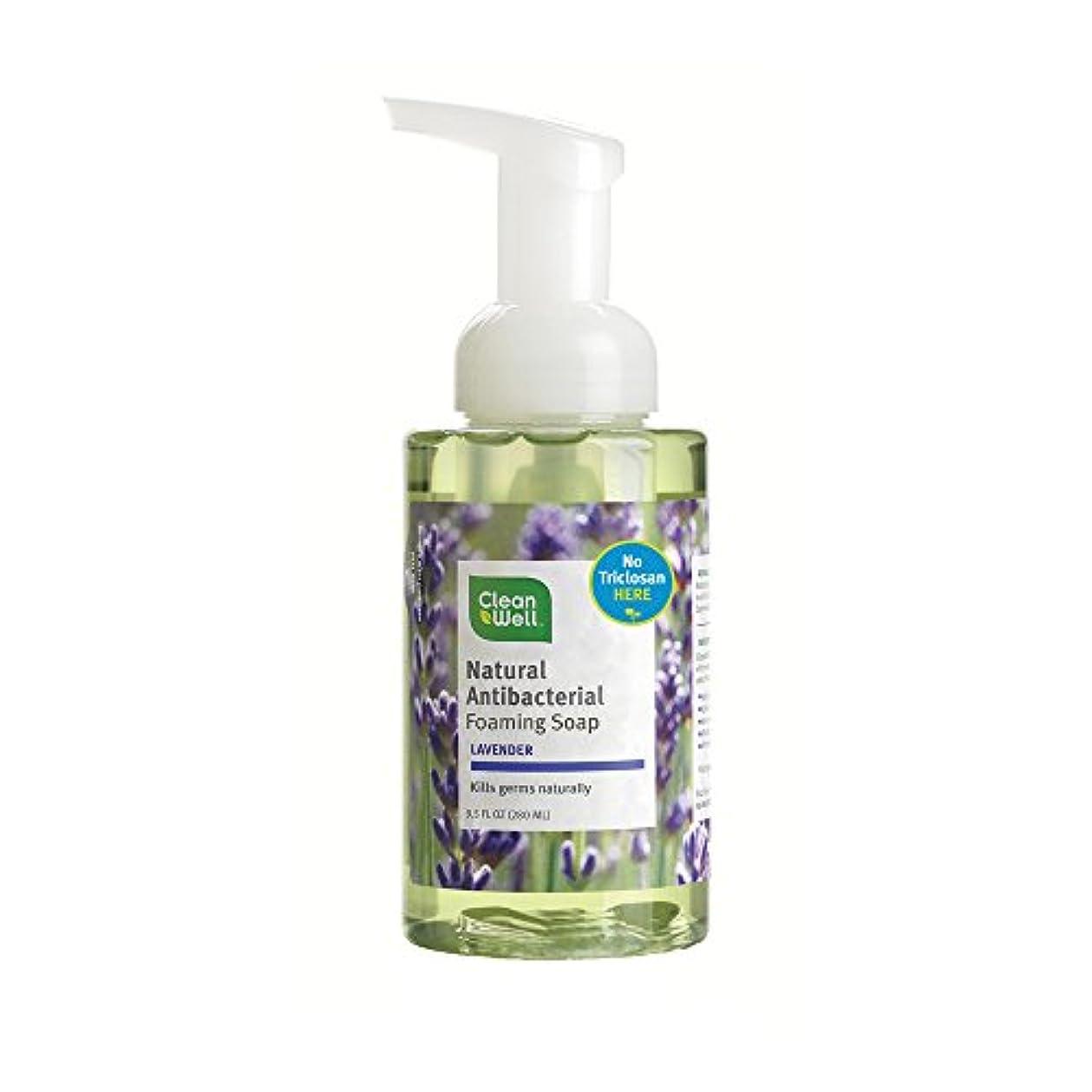 薄めるあなたが良くなります喜んでAll-Natural Antibacterial Foaming Hand Wash Lavender Absolute - 9.5 fl oz by CleanWell