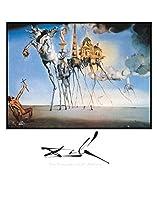 Salvador Dali – 聖アントニウスの誘惑 ファインアート プリント (55.88 x 71.12 cm)