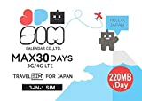 JPSIM 30日間day/220MB データ通信専用プリペイドSIMカード(TRAVEL FO...