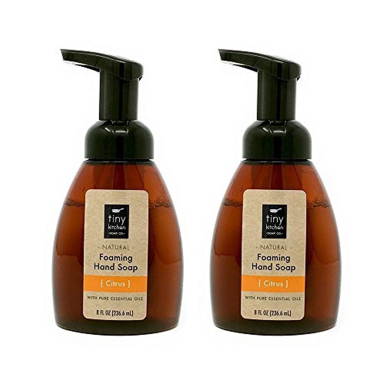 不良品溶接対話Citrus Foaming Hand Soap (2 Pack) Handmade with Organic Essential and Base Oils [並行輸入品]