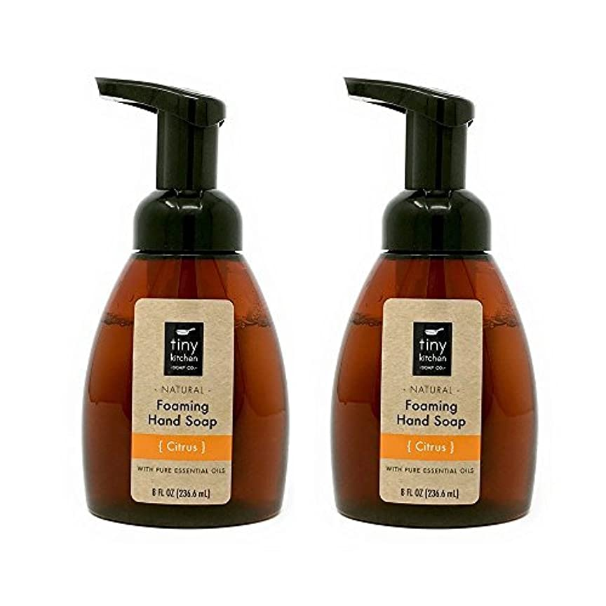 旅行者作詞家体操Citrus Foaming Hand Soap (2 Pack) Handmade with Organic Essential and Base Oils [並行輸入品]