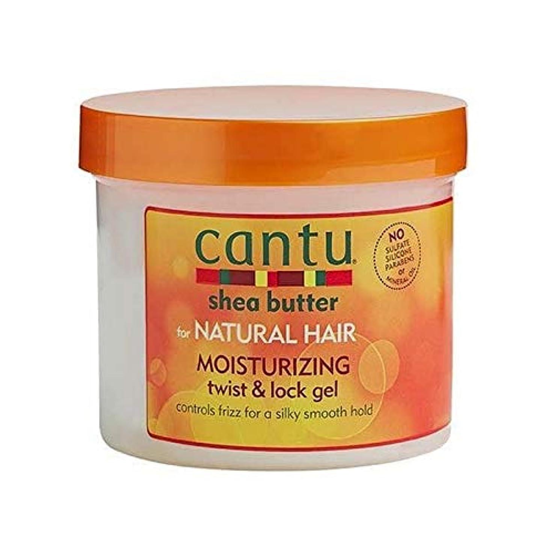 ミニチュアクアッガ懐疑論[Cantu ] 自然な髪のツイスト&ロックゲル370グラムのためのカントゥ - Cantu for Natural Hair Twist & Lock Gel 370g [並行輸入品]
