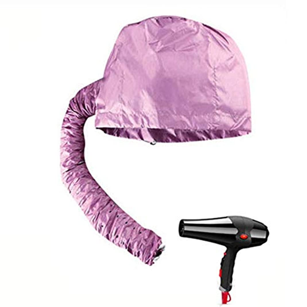スナップ安全性器用TerGOOSE ヒートキャップ ヘアドライヤーキャップ 加温キャップ DIY 加熱機能 マイルドヒートキャップ ヘアケア帽子 髪干し帽子 髪ケア ホームサロン タイマー機能 携帯(パープル)