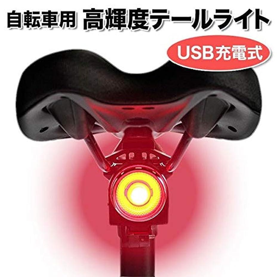 征服する貫入電極自転車 高輝度 テールライト USB充電 防水 警告灯 フラッシュ 点滅