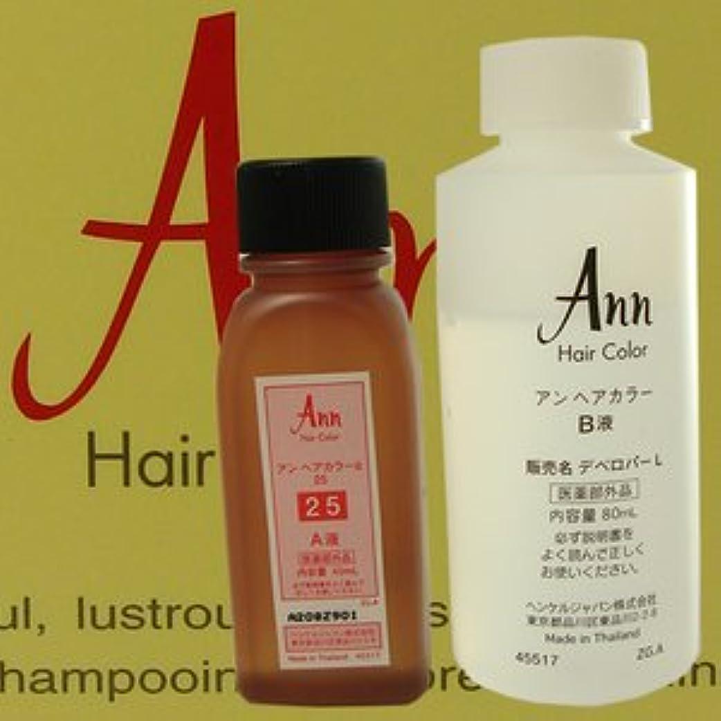 噴水日記書士アン ヘアカラー 【白箱】 ANN HAIRCOLOR 25(黄色味をおびた濃い栗色)