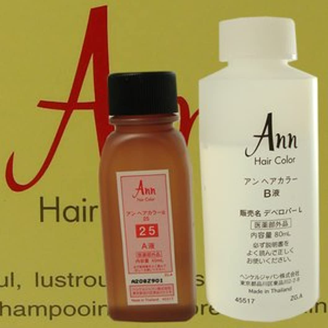 肉船迅速アン ヘアカラー 【白箱】 ANN HAIRCOLOR 25(黄色味をおびた濃い栗色)