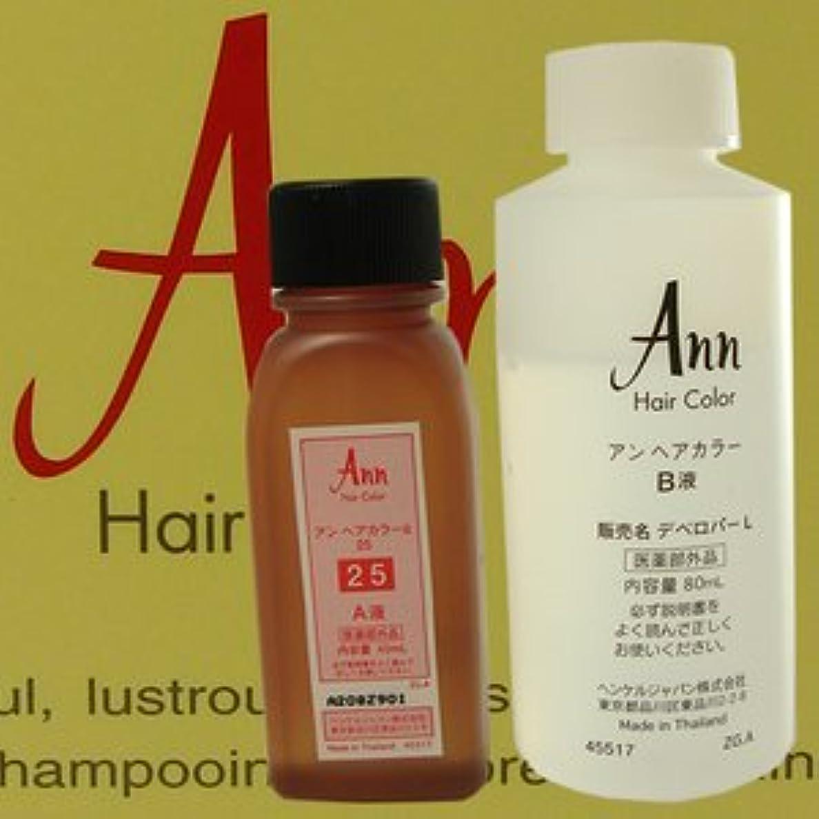 ミニアブセイ弁護アン ヘアカラー 【白箱】 ANN HAIRCOLOR 24(赤味をおびた暗褐色)