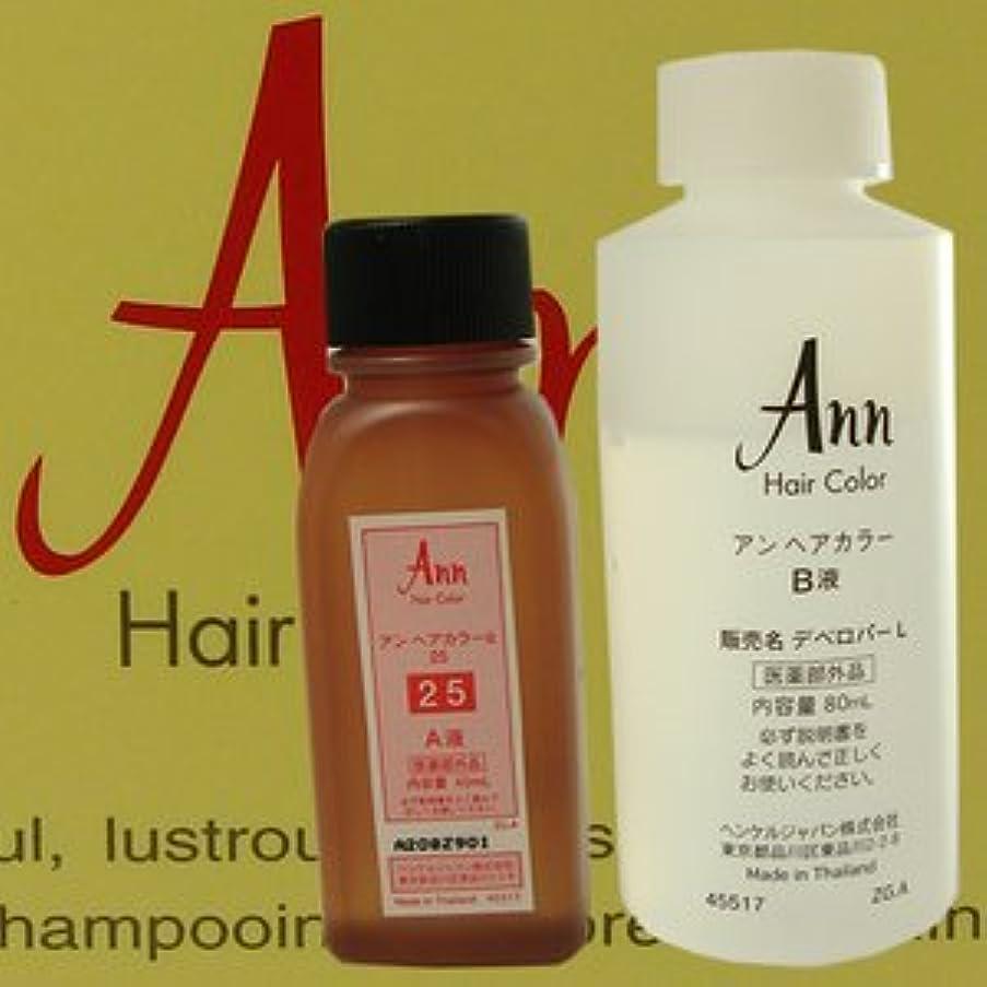 酸対処するやろうアン ヘアカラー 【白箱】 ANN HAIRCOLOR 25(黄色味をおびた濃い栗色)