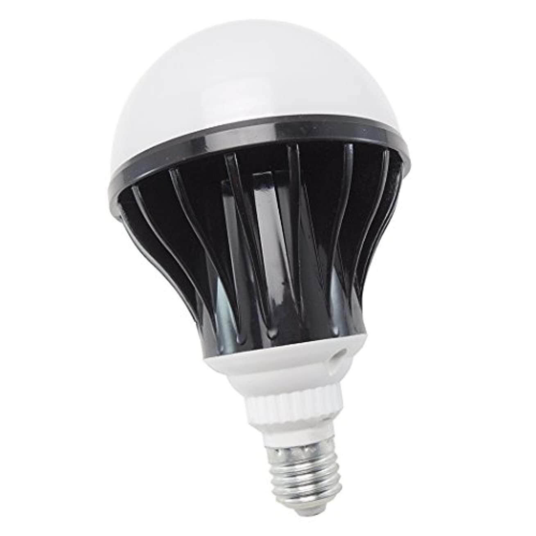 ポスト印象派顕現特殊LED 電球 E26 口金 船 ボート 用 作業灯 室内 室外灯 無極性 防水 ノイズレス デッキライト エンジンルームに (24v 12v 兼用)