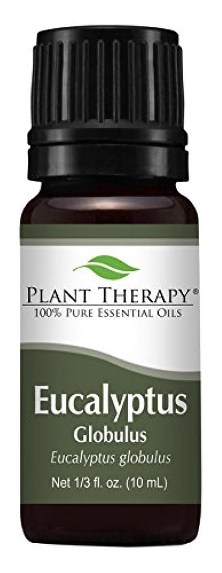 羽収束お茶Eucalyptus Essential oil (Globulus) Essential Oil. 10 ml (1/3 oz). 100% Pure, Undiluted, Therapeutic Grade by Plant Therapy Essential Oils