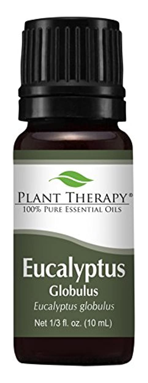 母資本市場Eucalyptus Essential oil (Globulus) Essential Oil. 10 ml (1/3 oz). 100% Pure, Undiluted, Therapeutic Grade by...