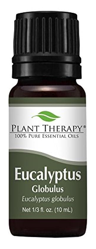 藤色プーノナンセンスEucalyptus Essential oil (Globulus) Essential Oil. 10 ml (1/3 oz). 100% Pure, Undiluted, Therapeutic Grade by...