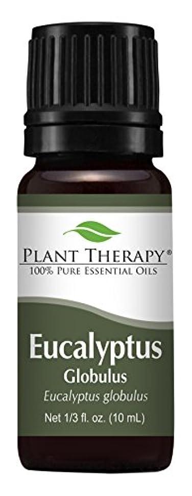パイプ続編ズームEucalyptus Essential oil (Globulus) Essential Oil. 10 ml (1/3 oz). 100% Pure, Undiluted, Therapeutic Grade by...