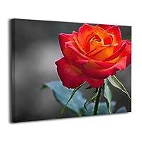 薔薇 レッドキャンバス絵画 モダン絵画 油絵 装飾画 現代絵画 写真 アートパネル 壁飾り 壁掛け 風景 自然 動植物 玄関 木製の枠 贈り物 40*50cm