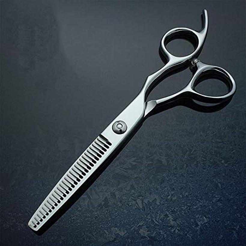 ボス引き算落花生BOBIDYEE 6インチパイプハンドルプロフェッショナルハイエンド理髪はさみ間伐歯はさみヘアカットはさみステンレス理髪はさみ (色 : Silver)