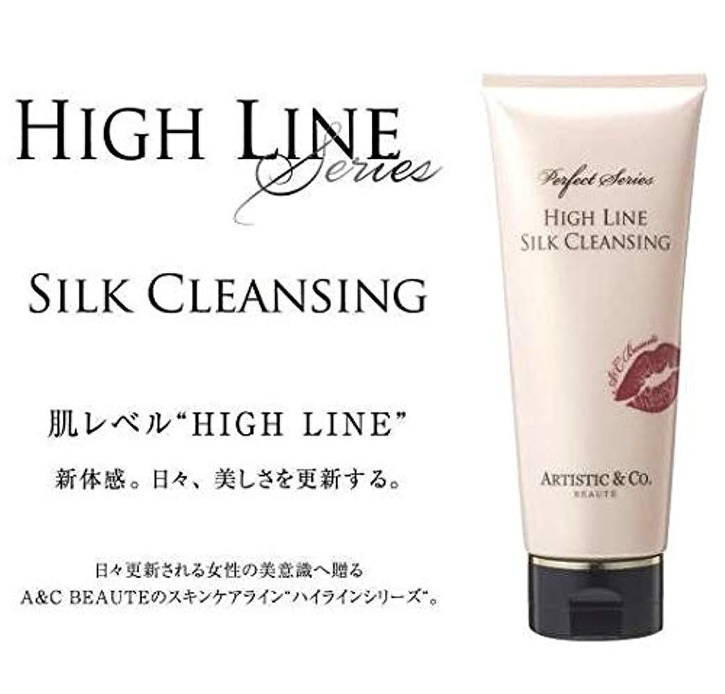 ナットテクスチャー不十分ARTISTIC&CO. (アーティスティック) HIGH LINE SILK CLEANSING ハイライン シルククレンジングジェル 200g レディス メンズ洗顔 美容液クレンジング