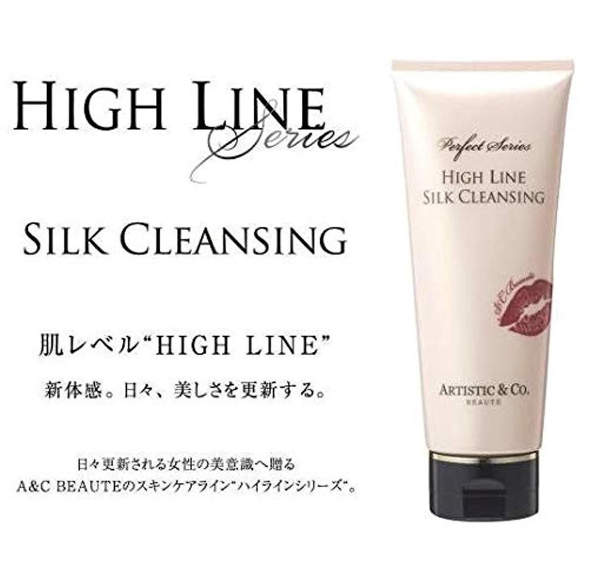 遅れ喪チャネルARTISTIC&CO. (アーティスティック) HIGH LINE SILK CLEANSING ハイライン シルククレンジングジェル 200g レディス メンズ洗顔 美容液クレンジング
