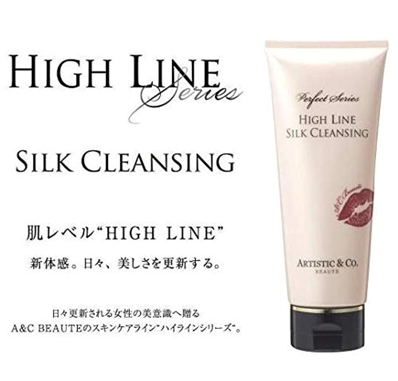 反発毛皮アテンダントARTISTIC&CO. (アーティスティック) HIGH LINE SILK CLEANSING ハイライン シルククレンジングジェル 200g レディス メンズ洗顔 美容液クレンジング