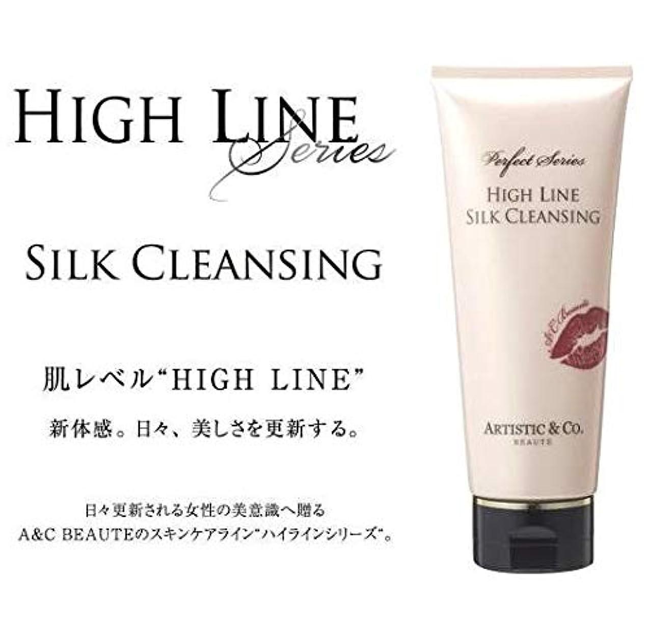 意志雪の何故なのARTISTIC&CO. (アーティスティック) HIGH LINE SILK CLEANSING ハイライン シルククレンジングジェル 200g レディス メンズ洗顔 美容液クレンジング