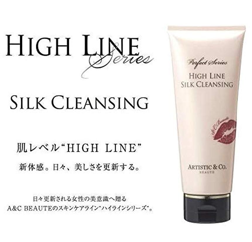 ティーンエイジャー津波自伝ARTISTIC&CO. (アーティスティック) HIGH LINE SILK CLEANSING ハイライン シルククレンジングジェル 200g レディス メンズ洗顔 美容液クレンジング
