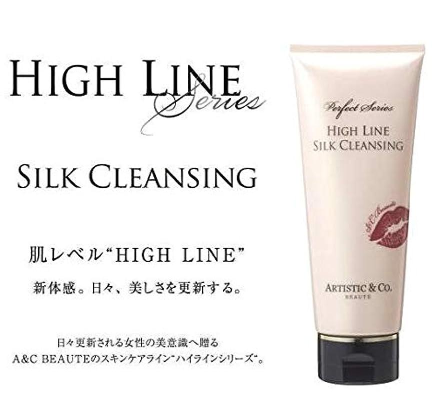 であることフェミニン一握りARTISTIC&CO. (アーティスティック) HIGH LINE SILK CLEANSING ハイライン シルククレンジングジェル 200g レディス メンズ洗顔 美容液クレンジング