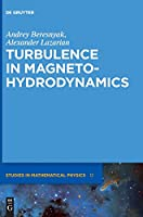Turbulence in Magnetohydrodynamics (De Gruyter Studies in Mathematical Physics)