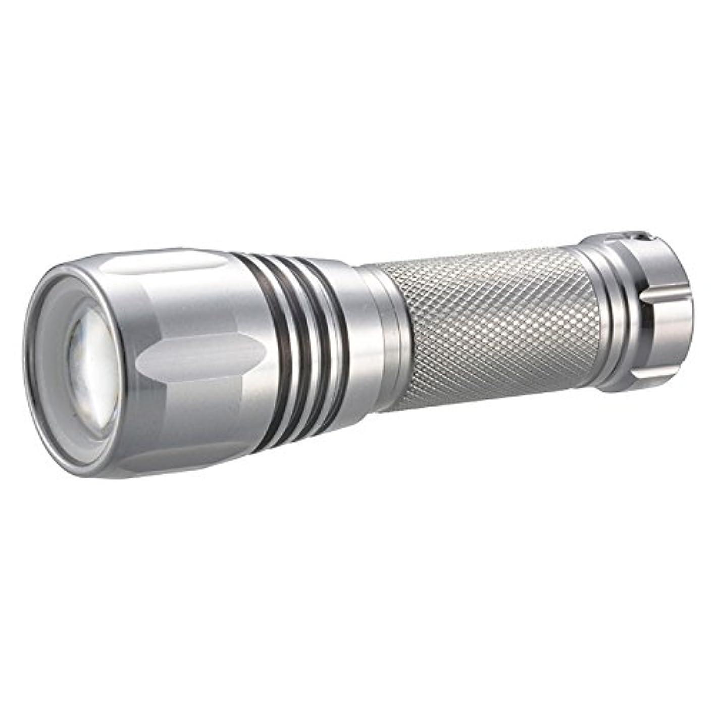 請求可能ぶどう公演懐中電灯 LEDズームライト 防水 IPX6 125lm 単3×1 LEDIANTOR ZOOM OHM LHA-DA312ZI-S 07-9695 オーム電機