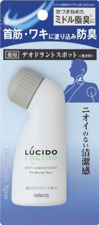 下に向けます省囲むLUCIDO (ルシード) 薬用デオドラントスポット (医薬部外品) 50mL