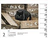 カレンダー2019 岩合光昭×ねこ (ヤマケイカレンダー2019) 画像