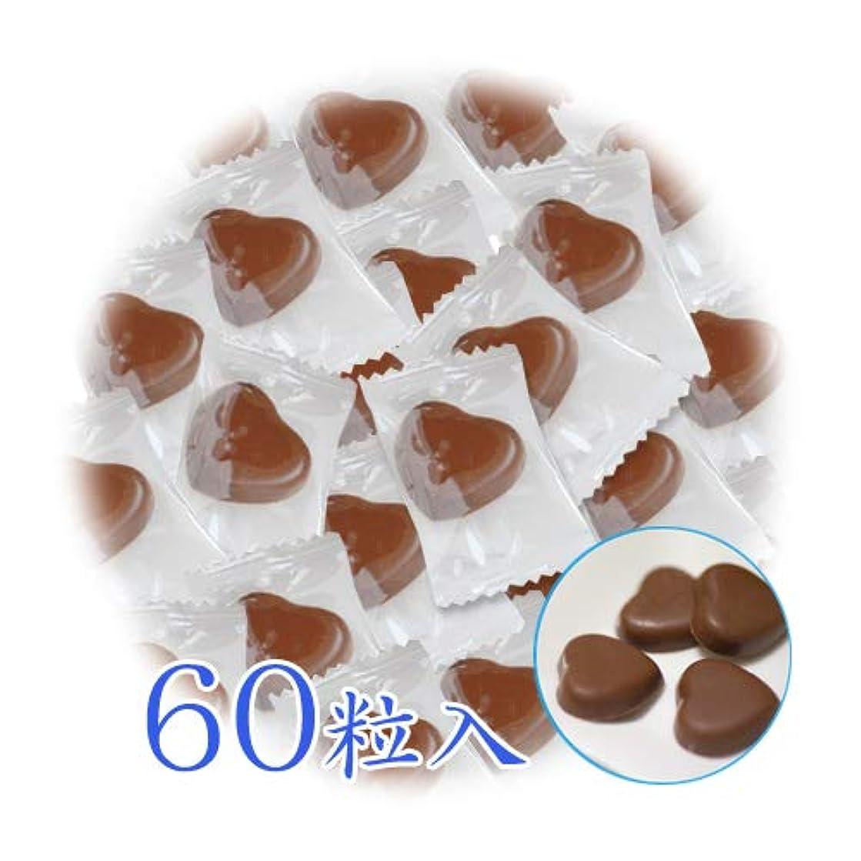 船外自発的一貫したキシリトール 100% キシリの力 チョコレート 箱なし 個包装 3g×60粒