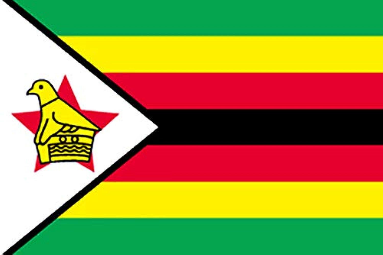国旗 ジンバブエ L版 No.23102(取寄商品)