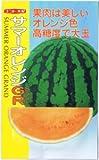 【種子】スイカ サマーオレンジグランド 約8粒
