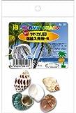 オカヤドカリの 宿替え貝殻S / 三晃商会