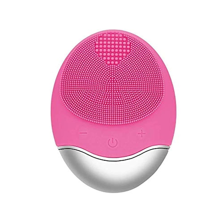 明らか変成器外観ZXF 新しい竹炭クレンジング楽器クレンジングポア充電式電気シリコーンにきびクレンジング楽器ピンク 滑らかである