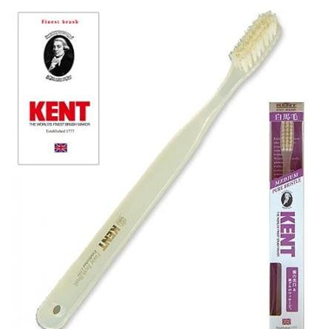 分析通信する兵士KENT(ケント) 白馬毛歯ブラシ ラージヘッド ふつう 2本セット