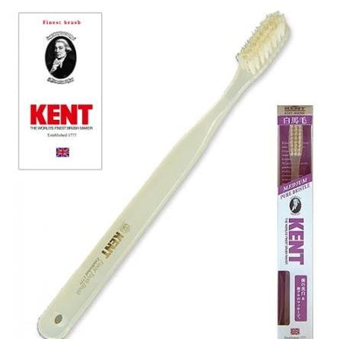 現金バドミントンパッチKENT(ケント) 白馬毛歯ブラシ ラージヘッド ふつう 2本セット