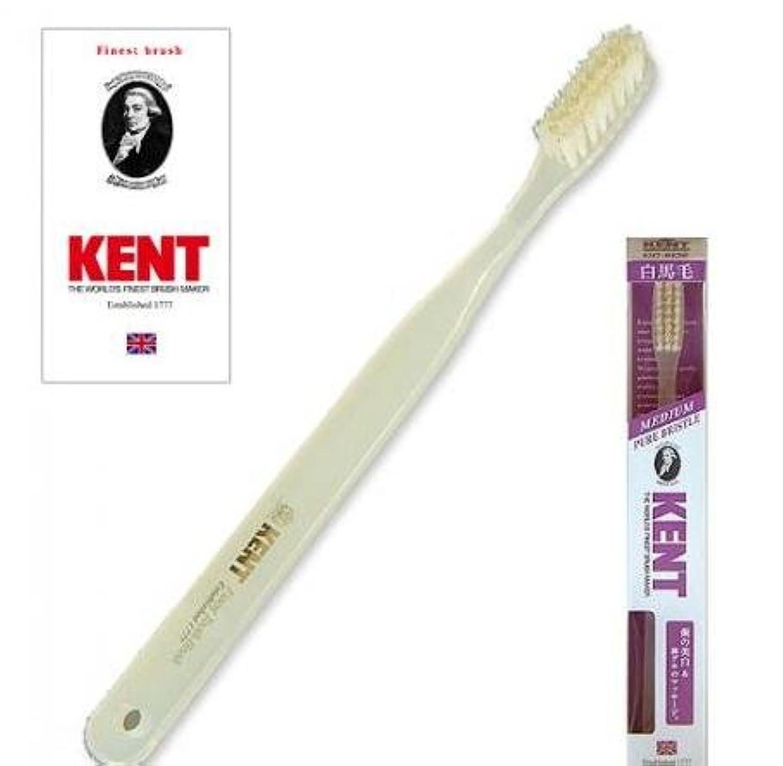KENT(ケント) 白馬毛歯ブラシ ラージヘッド ふつう 2本セット