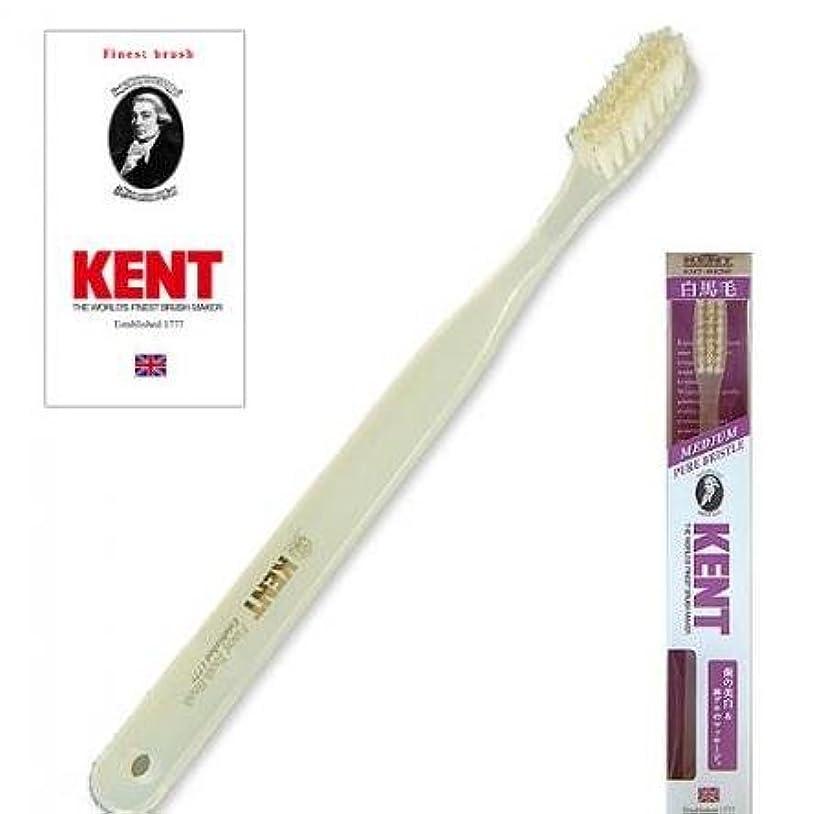 トレイローマ人散歩に行くKENT(ケント) 白馬毛歯ブラシ ラージヘッド ふつう 2本セット