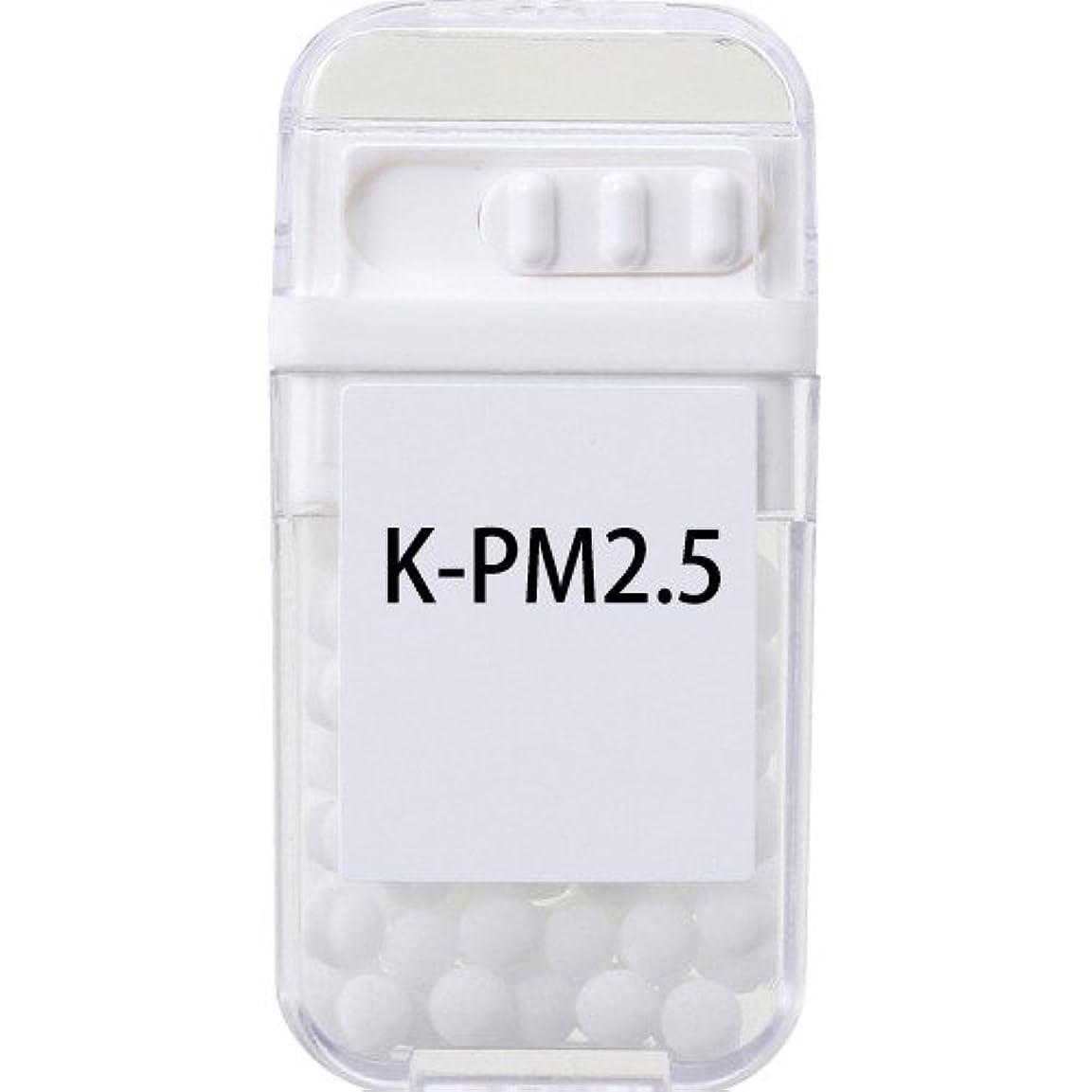 節約するはっきりしない銀河ホメオパシージャパンレメディー K-PM2.5  (大ビン)
