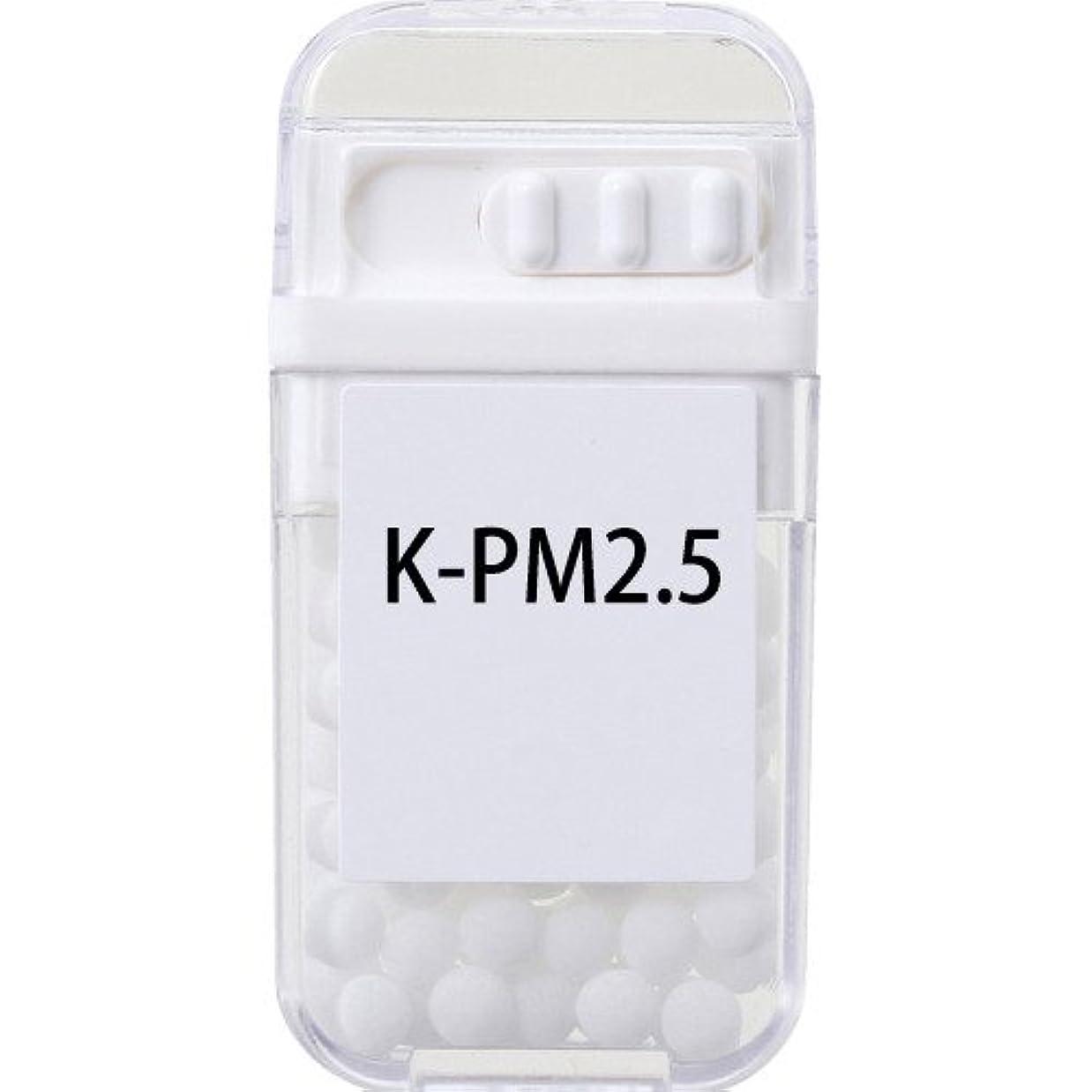 ページ合理化日食ホメオパシージャパンレメディー K-PM2.5  (大ビン)