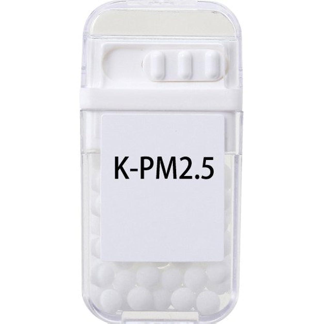 熱ボール腫瘍ホメオパシージャパンレメディー K-PM2.5  (大ビン)