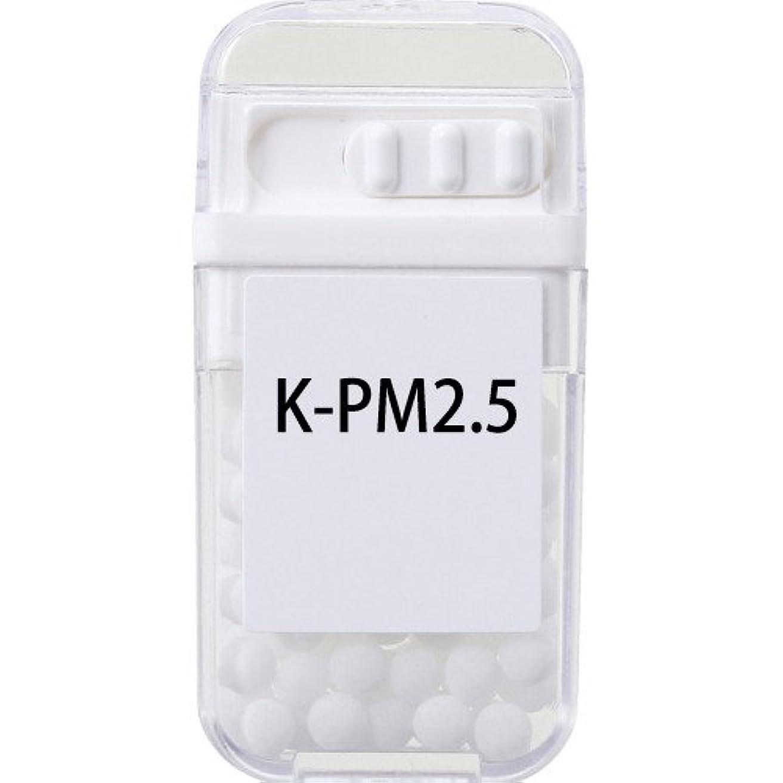 誤解を招くに慣れ役立つホメオパシージャパンレメディー K-PM2.5  (大ビン)